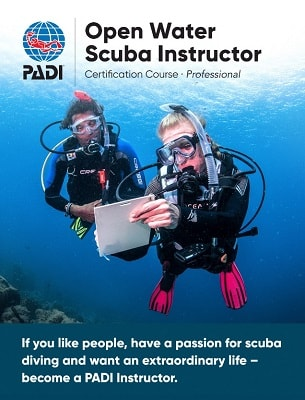 wellington padi open water scuba instructor certification scuba diving course for Dive Leaders