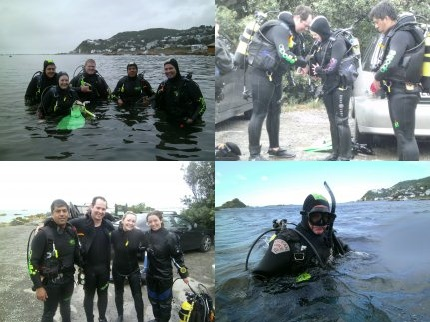 Scuba Diving - Dive Crew Adventures