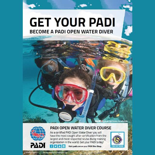 Get your PADI Open Water Diver course Wellington Dive Shop, NZ Sea Adventures Scuba Diving Course-min