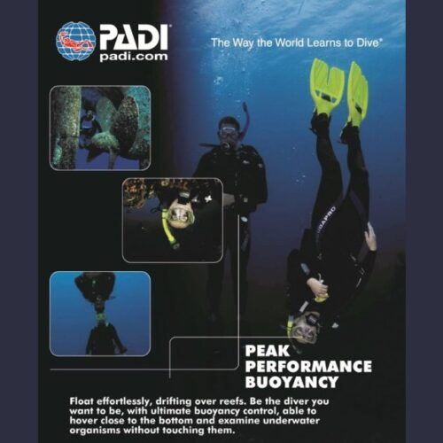 Wellington Scuba Diving-Peak Performance Buoyancy