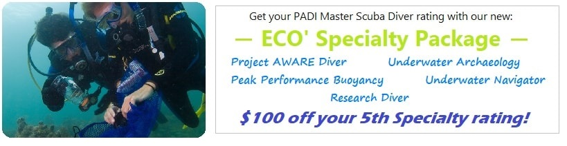 Wellington ECO PADI Specialty Package SCUBA NZ