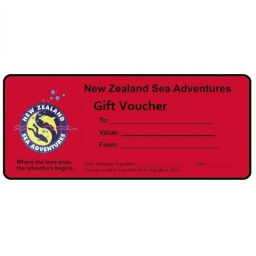 Wellington Scuba Diving-Vouchers