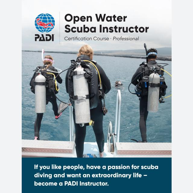 Wellington Scuba Diving-PADI Instructor Development Course