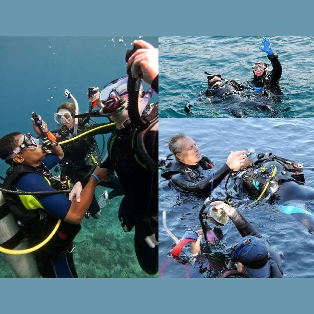 Wellington PADI Rescue Diver course nz scuba diving