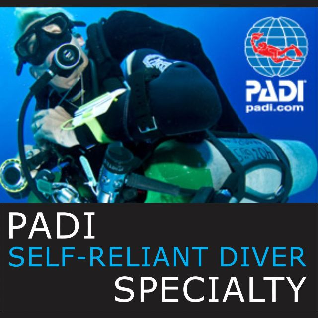 Wellington dive course PADI Self Reliant