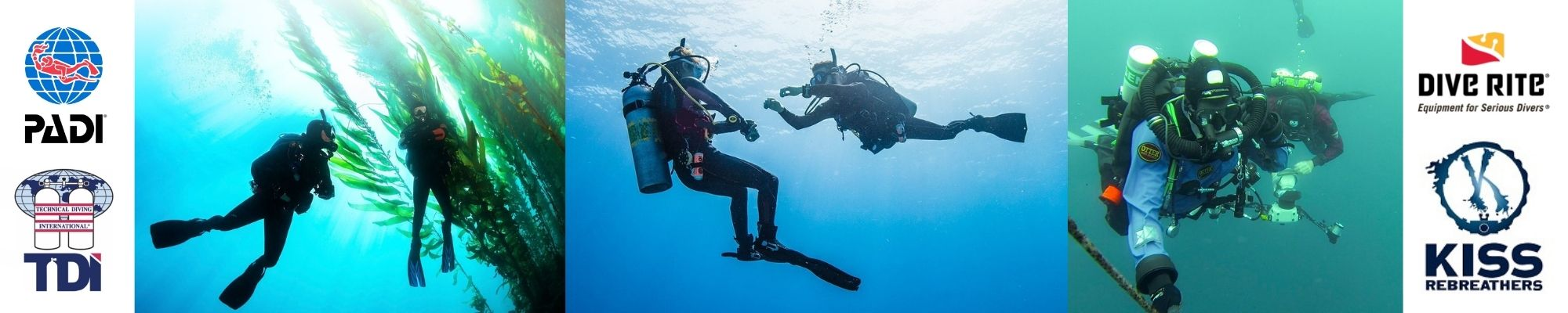 Wellington dive courses and equipment scuba diving freediving and rebreathers ccr