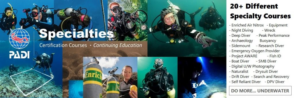 Wellington-scuba-diving-specialty-courses-padi-adventure-underwater