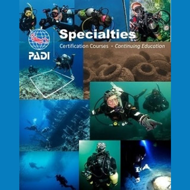 fun scuba diving course specialty diver courses in Wellington nz padi course 8