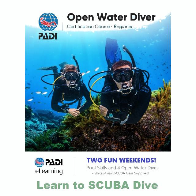 scuba diving course dive lessons wellington padi dive fun