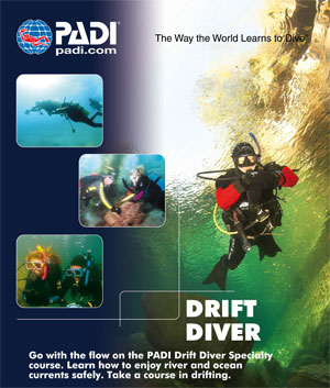 wellington drift diver specialty scuba diving course padi
