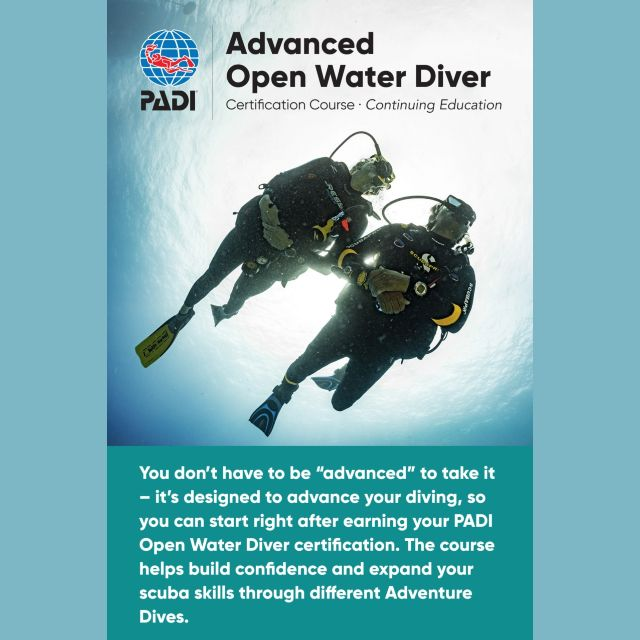 wellington scuba diving advanced open water diver course nz