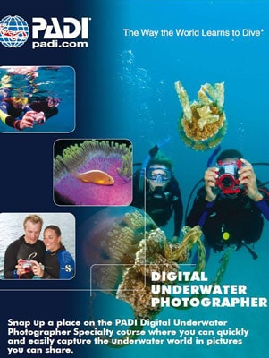Scuba Diving - nDigital Underwater Photography