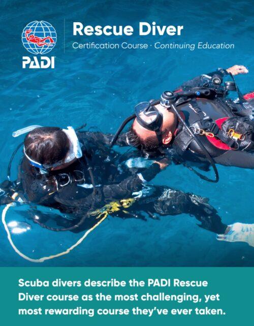 wellington scuba diving rescue diver course nz fun dive course