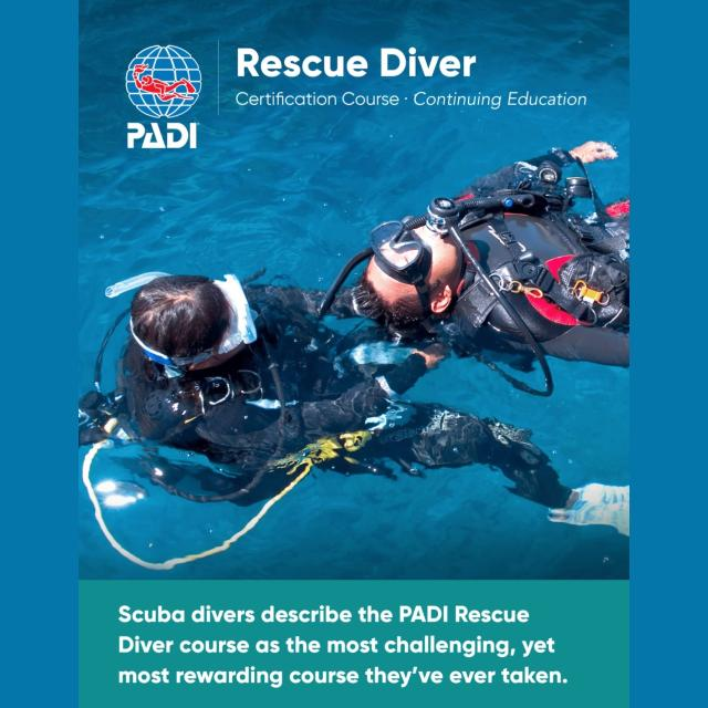 wellington scuba diving rescue diver course nz fun dive course