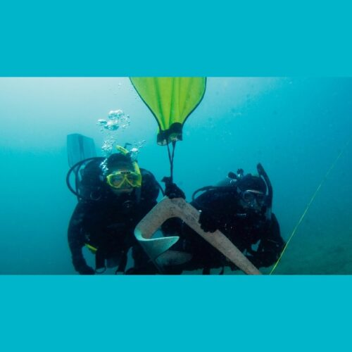 Wellington Scuba Diving-Search & Recovery Diver